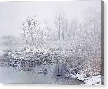 Snowmist Marsh Canvas Print by Kathi Mirto
