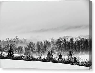 Snowscape Canvas Print by Nicki McManus