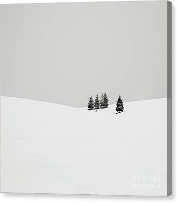 Winter Trees Canvas Print - Snowscapes   Almost There by Ronny Behnert