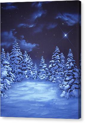 Snowstars Canvas Print by William Rogers