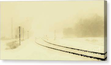 Snowstorm In The Yard S Canvas Print