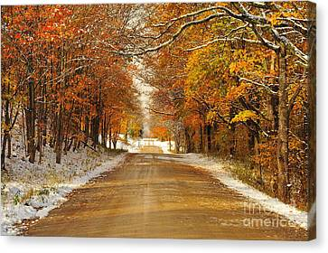 Snowy Autumn Morning In Pure Michigan Canvas Print