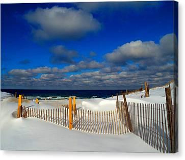 Snowy Beach  Canvas Print by Dianne Cowen