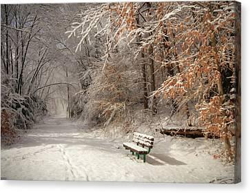 Rail Siding Canvas Print - Snowy Bench by Lori Deiter