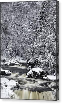 Snowy Blackwater Canvas Print