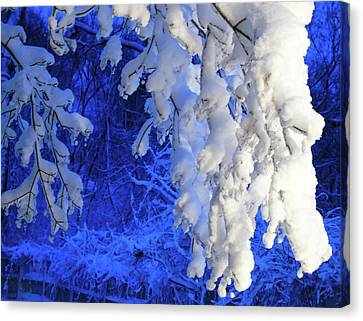 Snowy Blue Morning Canvas Print
