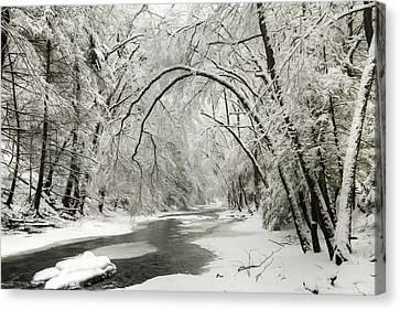 Snowy Clarks Creek Canvas Print