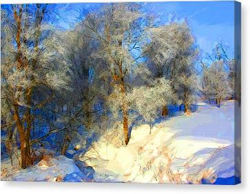 Snowy Creek Etc Canvas Print by Julie Lueders