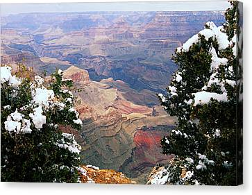 Snowy Dropoff - Grand Canyon Canvas Print by Larry Ricker