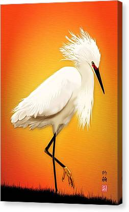 Snowy Egret At Sunset Canvas Print by John Wills