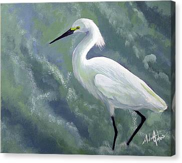 Snowy Egret In Water Canvas Print