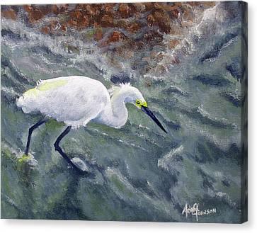 Snowy Egret Near Jetty Rock Canvas Print by Adam Johnson