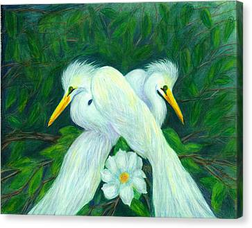 Canvas Print featuring the painting Snowy Egrets by Jeanne Kay Juhos