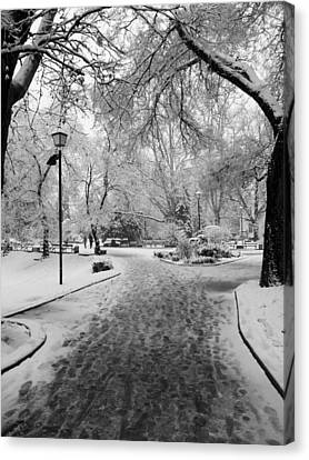 Snowy Entrance To The Park Canvas Print by Rae Tucker