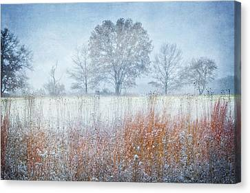 Snowy Field 2 - Winter At Retzer Nature Center  Canvas Print by Jennifer Rondinelli Reilly - Fine Art Photography