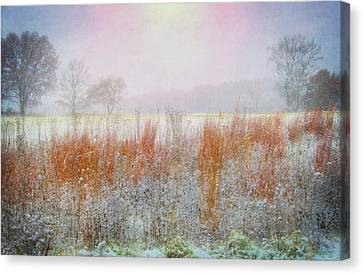 Snowy Field - Winter At Retzer Nature Center  Canvas Print by Jennifer Rondinelli Reilly - Fine Art Photography