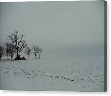 Snowy Illinois Field Canvas Print