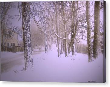 Snowy Landscape Canvas Print by Mikki Cucuzzo