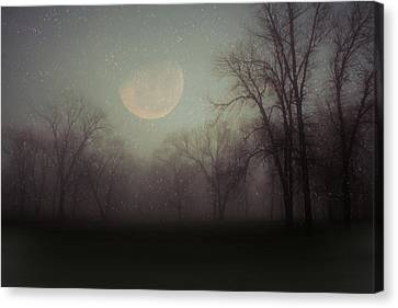 Moonlit Dreams Canvas Print