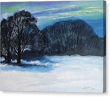 Snowy Moonlight Night Canvas Print
