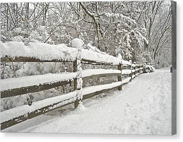 Snowy Morning Canvas Print by Michael Peychich