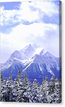 Rocky Mountain Canvas Print - Snowy Mountain by Elena Elisseeva