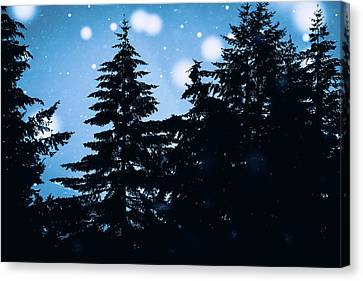 Snowy Night Canvas Print by Debi Bishop