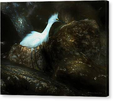 Snowy On The Rocks Canvas Print by Marvin Spates