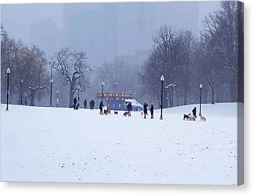 Snowy Playtime Boston Common Boston Ma Canvas Print by Toby McGuire