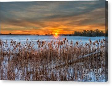 Snowy Sunrise Canvas Print by Anthony Tucci