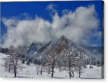 Snowy Trees And The Flatirons Boulder Colorado Canvas Print by James BO  Insogna