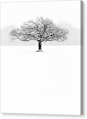 So Alone, A Perfect Reflection Of My Empty Soul Canvas Print by Matt Anderson