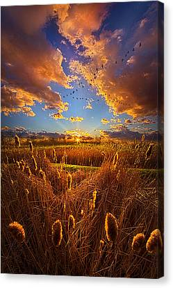 So Long I Can't Remember Canvas Print by Phil Koch