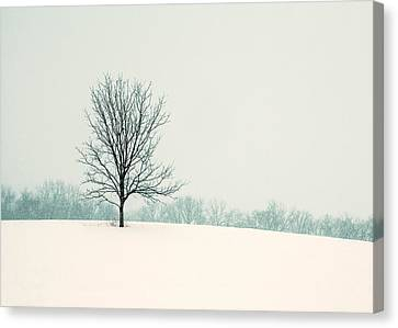 So Silent Canvas Print by Todd Klassy