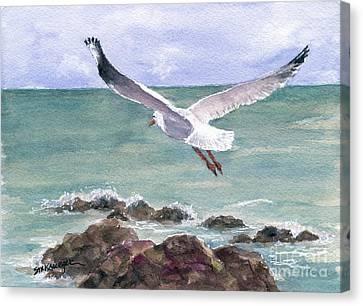 Soaring Gull Canvas Print