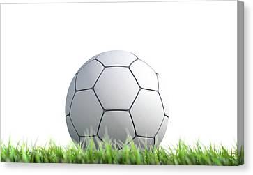 Soccer Ball Resting On Grass Canvas Print