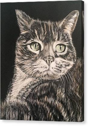 Socks Canvas Print