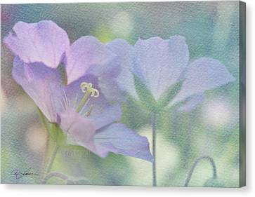 Canvas Print featuring the photograph Soft Blue by Ann Lauwers