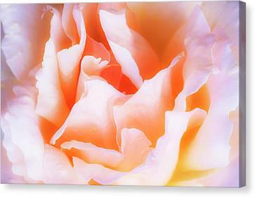 The Nature Center Canvas Print - Soft Elegance by Vishwanath Bhat