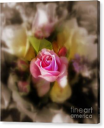 Soft Focus Canvas Print by Sian Lindemann