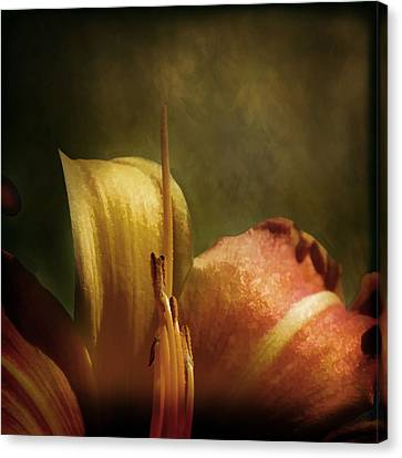 Canvas Print featuring the photograph Soft Lily by Gary Smith
