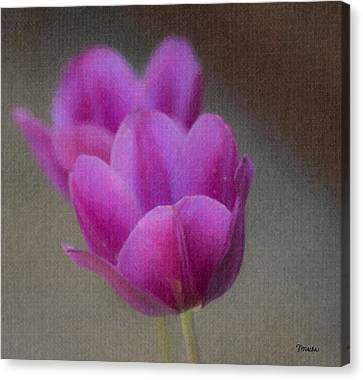 Soft Pastel Purple Tulips  Canvas Print by Teresa Mucha