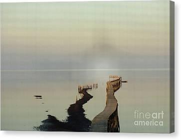 Soft  Walk Canvas Print