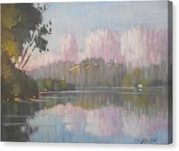 Soft Reflections Canvas Print by Len Stomski