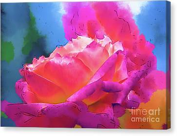 Soft Rose Bloom In Red And Purple Canvas Print by Kirt Tisdale