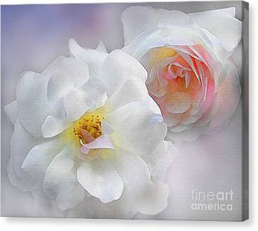 Soft Roses Canvas Print by Robert Foster
