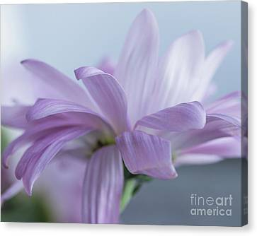Soft Touch Canvas Print