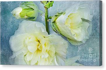 Canvas Print featuring the photograph Softly by Betty LaRue