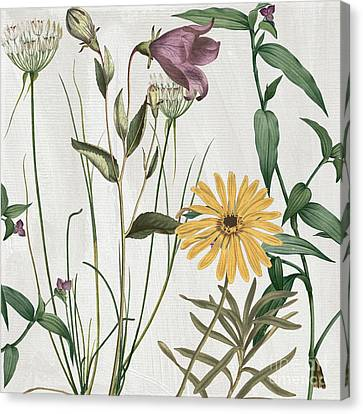 Alliums Canvas Print - Softly Crocus And Daisy by Mindy Sommers