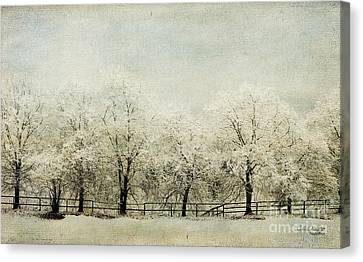 Softly Falling Snow Canvas Print by Chris Armytage